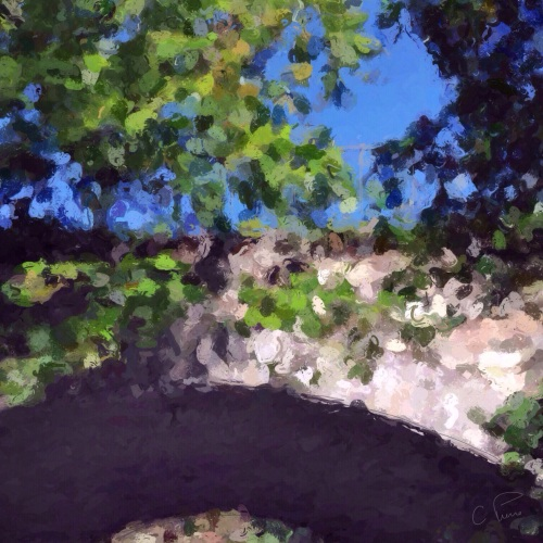 """Arch in Central Park."" ©2013. Christianna Pierce."