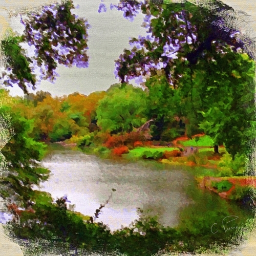 """Tranquil Pond in Central Park."" ©2013. Christianna Pierce."